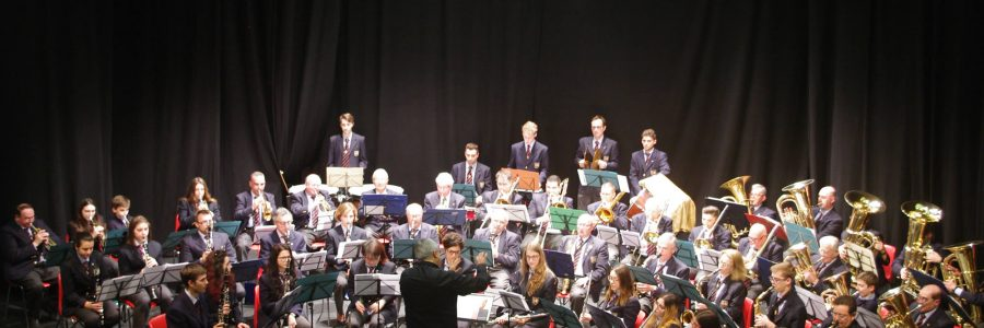 Il Maestro Fulvio Creux incanta la platea del Civico